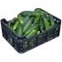 Šviežus agurkai trumpavaisiai (Fresh cucumbers) £2,79 kg