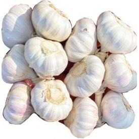 Česnako galva kaina per vienetą £0,99 (Garlic price per head)
