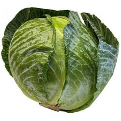 Kopūsto galva,kaina per vienetą  (Cabbage head)