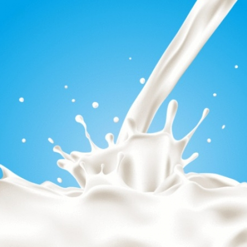 Pienas (Milk)