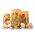 Grybai (Mushrooms)
